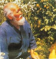 自然农法之父:福冈正信