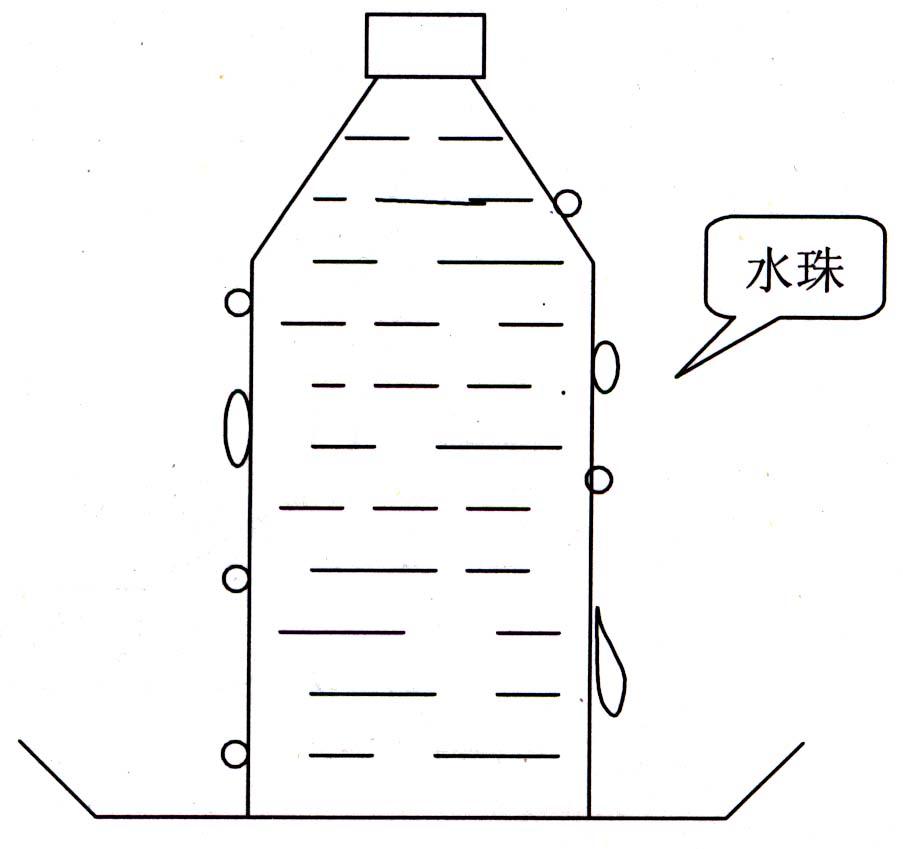 饮料,矿泉水瓶子