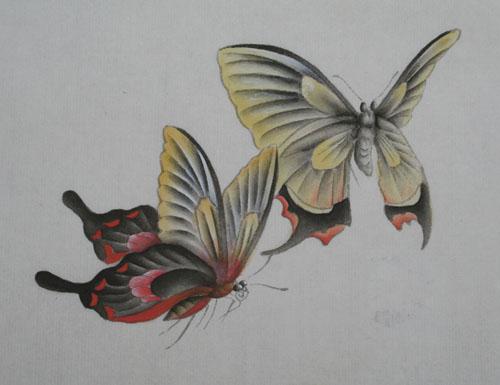工笔花鸟画教程(七)--蝴蝶的画法