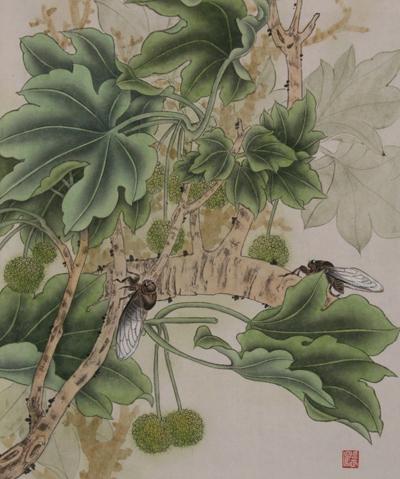 工笔花鸟画教程 十 蝉的画法