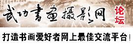 武功书画摄影网论坛