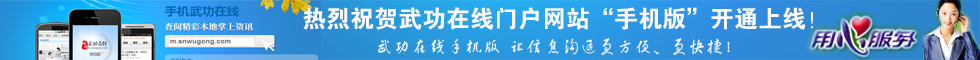 """扫描二维码登陆武功在线""""手机版""""更方便!"""