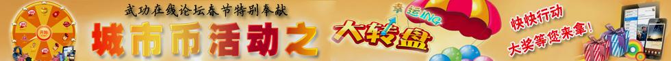武功2013年新年特别奉献大转盘活动,大奖等你来拿!