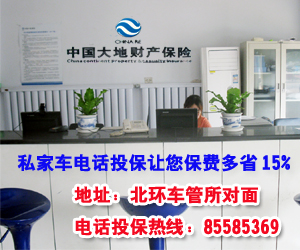 中國大地保險