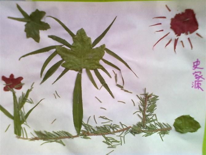 制作了美丽的树叶拼贴画