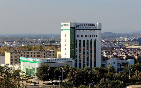 农村欧式办公楼