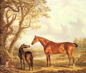 壁纸 动物 鹿 油画 360_307