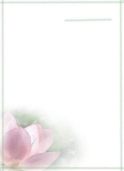 67元/本 3.32元/本 a4高档信纸 21x29.5cm 1色 9.10元/本 6.