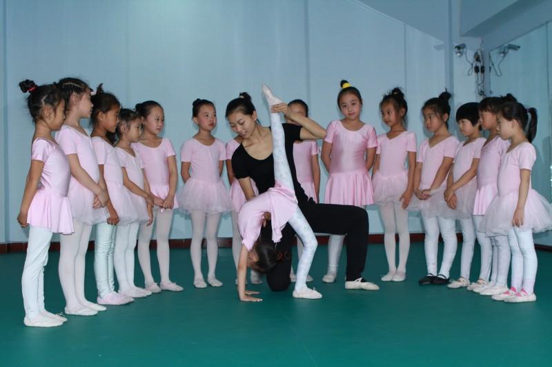 系统的学习舞蹈基本功,幼儿舞蹈组合,民族民间舞蹈,古典舞蹈,芭蕾形体